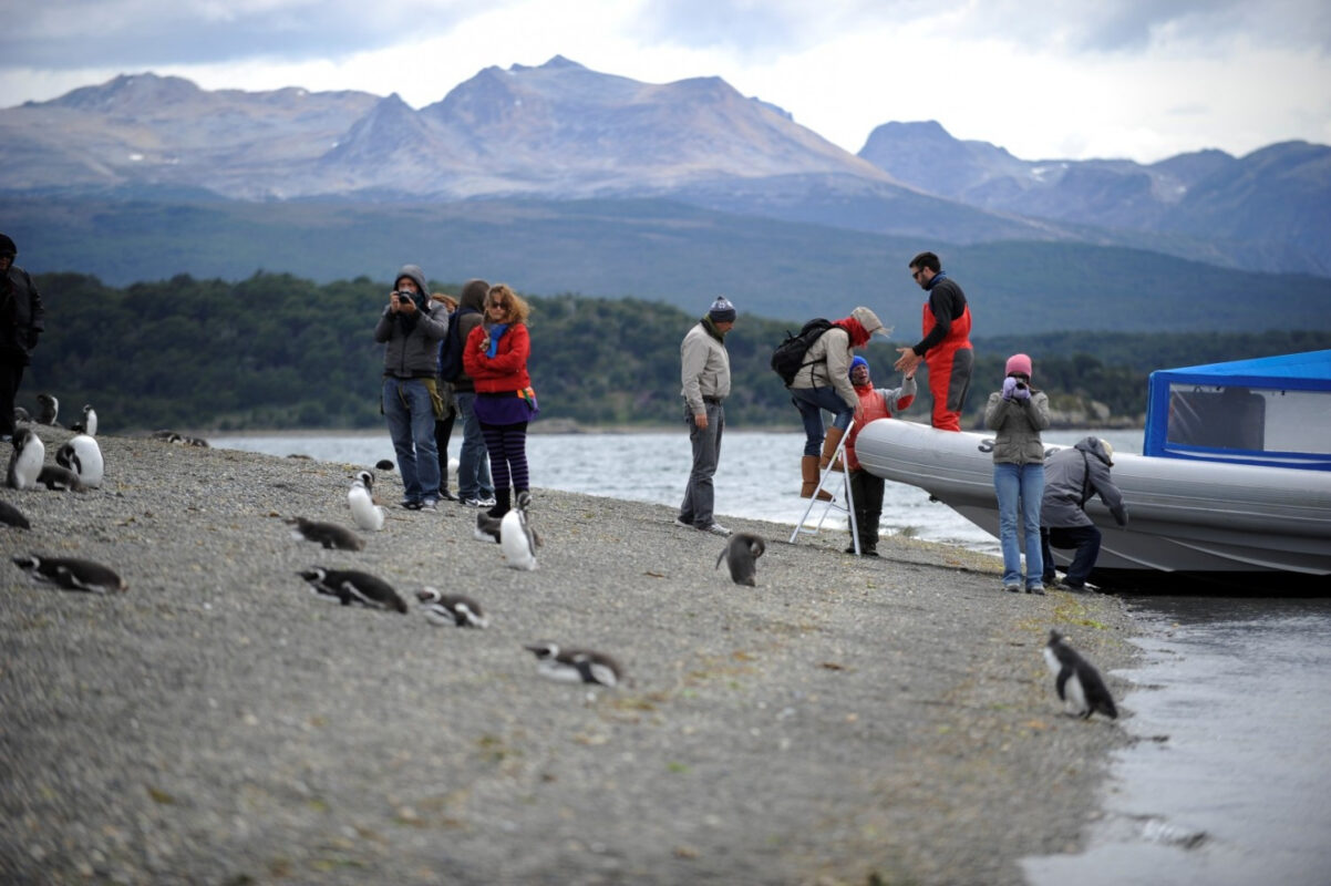 ushuaia canal beagle