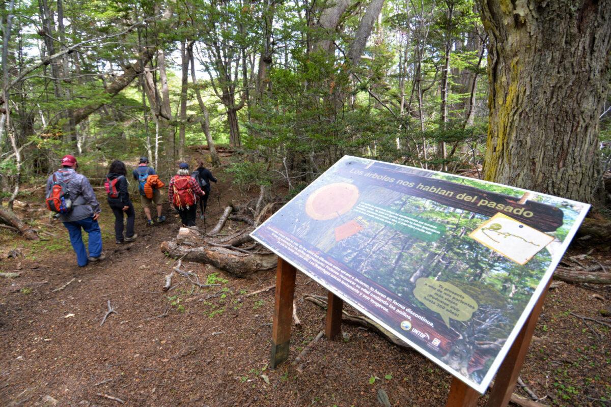 Parque Nacional tierra del fuego (Ushuaia)